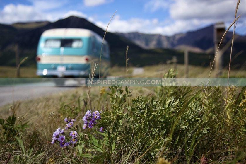 Vintage Campervan Myrtle Cool Camping Campsite