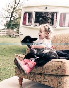 Vintage Caravan Inspired Camping Cool Camping Campsite
