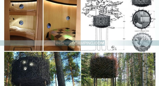 Treehouse camping glamping trends