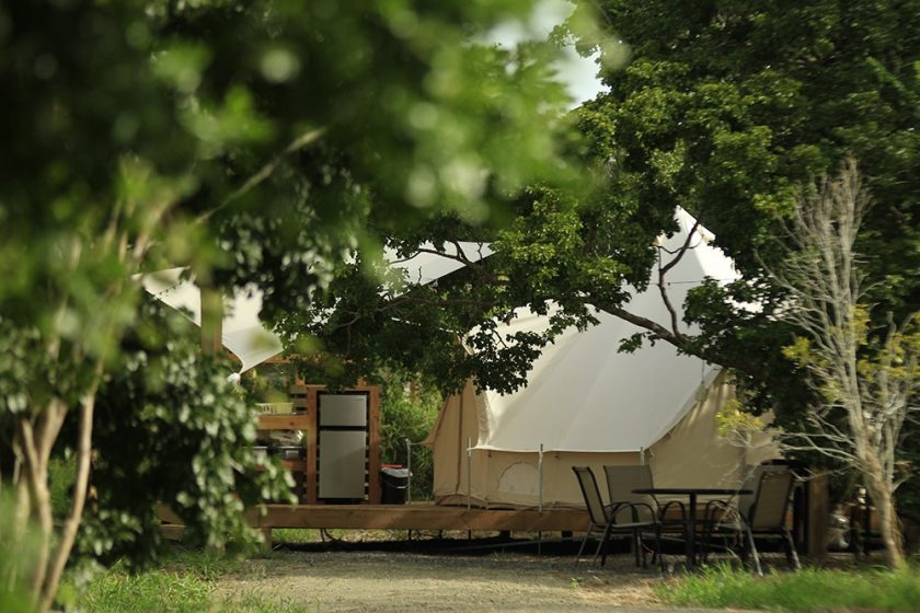 Pitayaha glamping business advice